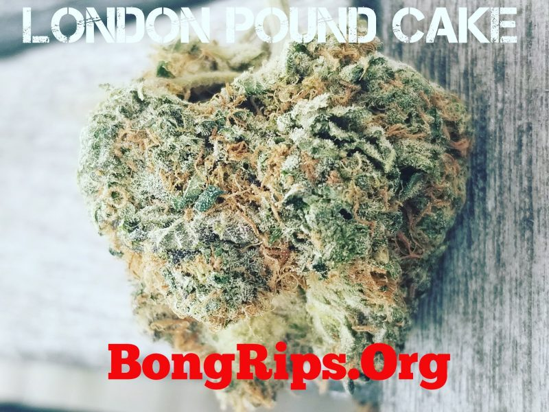 London Pound Cake Strain Review, heavy indica strain alert