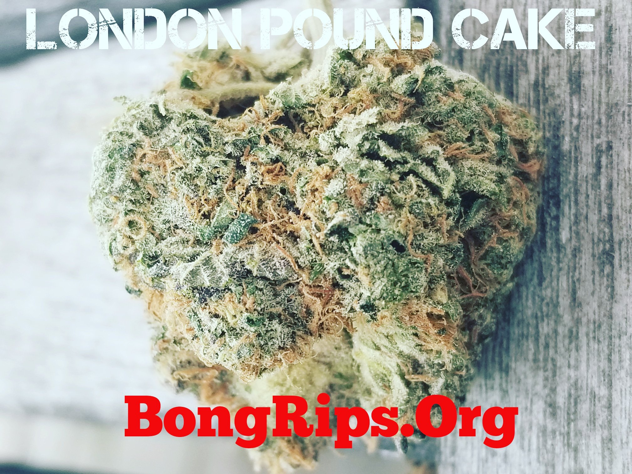London Pound Cake Strain Review, heavy indica alert