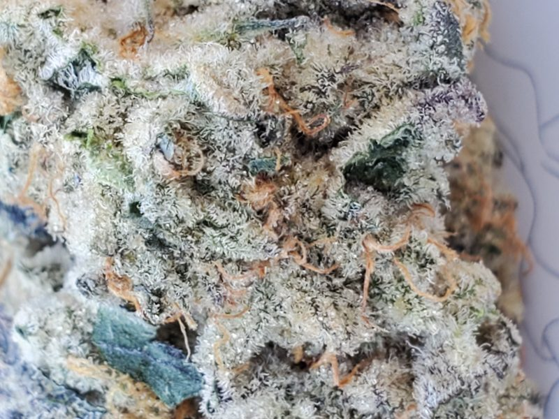 Oreo Cookie Strain is mind numbing