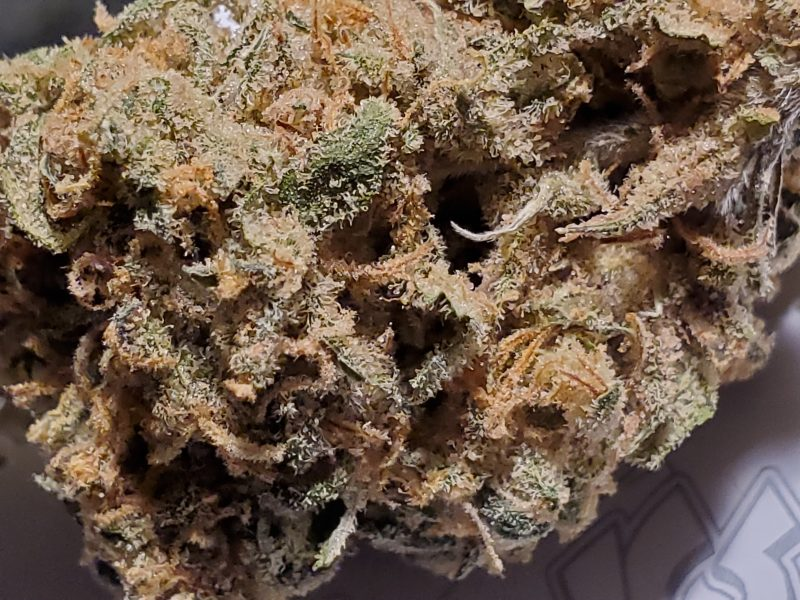 Red Congolese Strain, a creative uplifting landrace